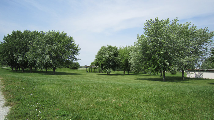 Crothers Park 2